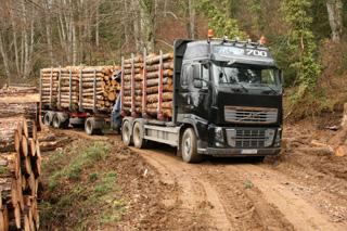 El Volvo FH 16 6X4 de 700 CV debe rendir al máximo en la industria forestal.