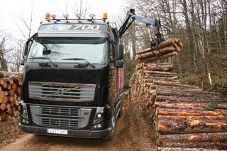 Gracias a la grúa estos camiones son autosuficientes para la operación de carga en el bosque.