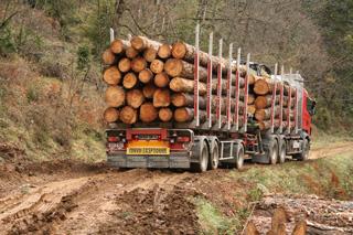 El colega del Scania galo iniciará el descenso en primer lugar, con toda la prudencia.