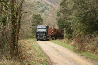 La ruta a través de los Pirineos se prolonga durante 300 kilómetros y nos lleva fuera del asfalto en los bosques de Axat.