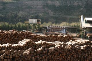Nuestro destino, el aserradero Boix, donde la madera se transforma en pallets, embalajes, etc.