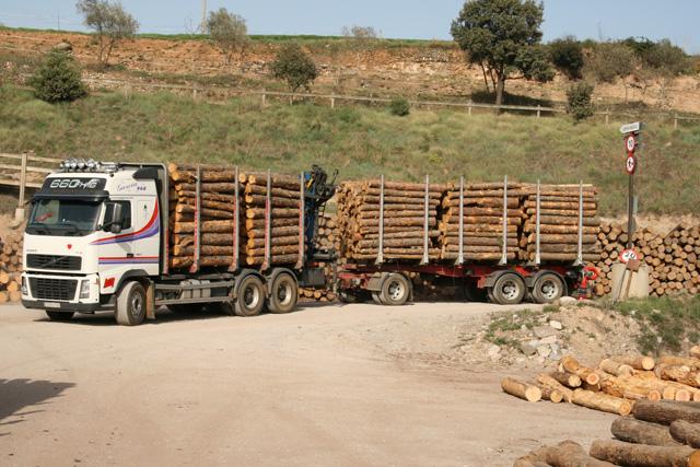 La carrocería y grúas de estos camiones ha sido específicamente diseñada para la carga de troncos de una medida determinada.