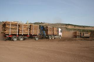 Cada camión se dirige a su punto de descarga.