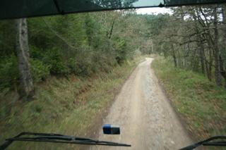 ¡Pues sí! por la estrecha pista forestal circulan los trenes de carretera de 57 toneladas de nuestros amigos.
