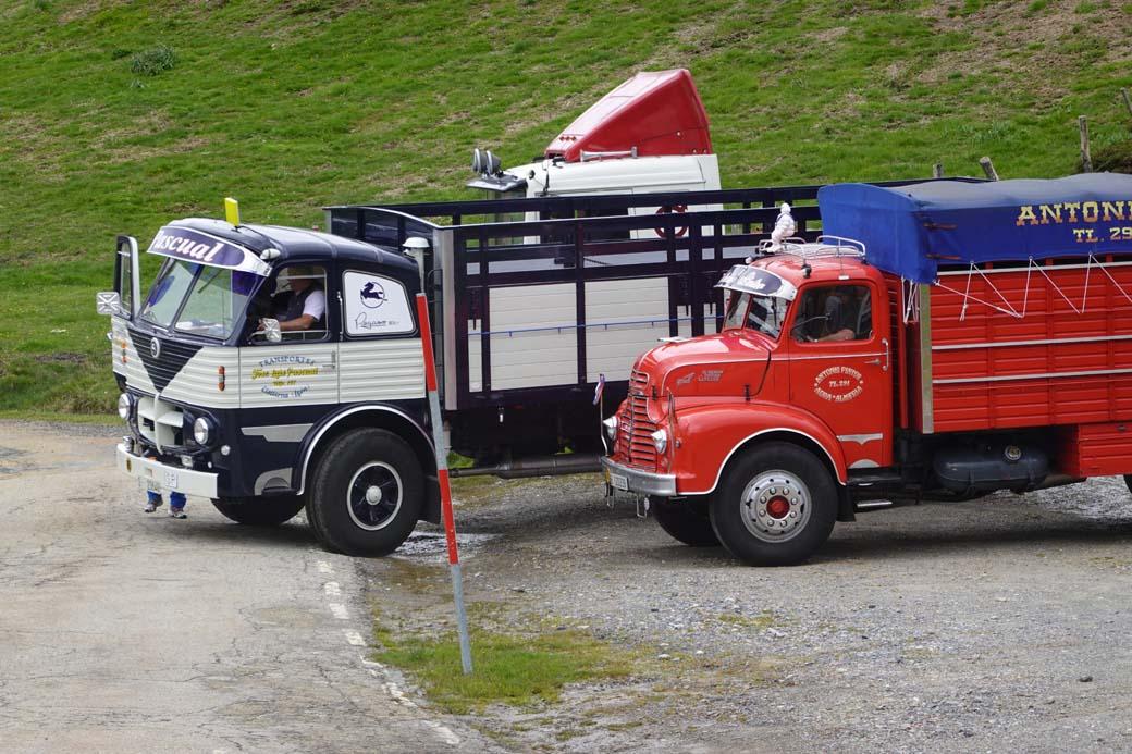 Esta imagen de camiones clásicos de nuestro transporte histórico, podría pertenecer a un aparcamiento de hace medio siglo.